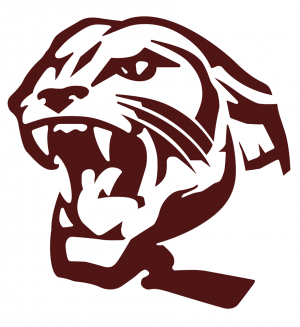 benton panthers mascot logo new