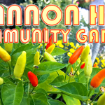 Locals are Invited to Participate in the Community Garden