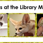 Come see the Animals on Monday Afternoon at Both Library Locations