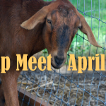 Farm Swap Meet at the Fairgrounds April 1st