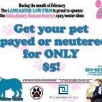 Get Your Pets Spayed or Neutered for $5 Until End of Feb