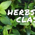 Learn About Different Uses for Herbs in Benton on March 17th