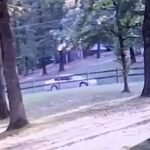 Surveillance Video Shows Benton Mail Theft Suspect