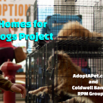 Pet Adoptions and Supplies Drive on Oct 13 & 14 in Benton & Bryant